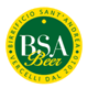 BSA (Birrificio San'Andrea)