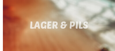 Lager e Pils 1001Birre